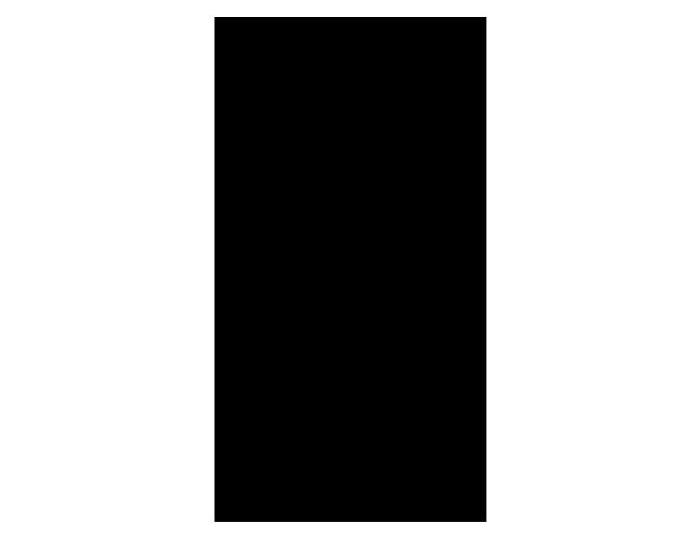 logo-paimei-780x600px